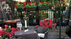 Лятна градина в центъра на София