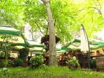Лятна градина в Центъра - Мелнишка Скара, ресторант в София